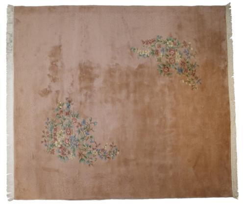 1777-kashiNichol-India